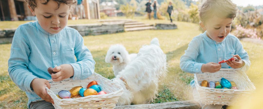Easter Pet Hazards